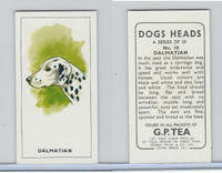 G0-0 G.P. Tea, Dogs Heads, 1963, #10 Dalmatian