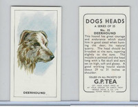 G0-0 G.P. Tea, Dogs Heads, 1963, #15 Deerhound