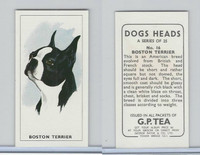 G0-0 G.P. Tea, Dogs Heads, 1963, #16 Boston Terrier