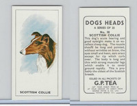 G0-0 G.P. Tea, Dogs Heads, 1963, #18 Scottish Collie