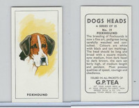 G0-0 G.P. Tea, Dogs Heads, 1963, #19 Foxhound