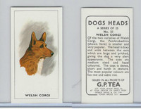G0-0 G.P. Tea, Dogs Heads, 1963, #21 Welsh Corgi