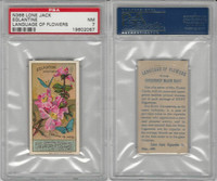 N366 Lone Jack, Language of Flowers, 1887, Eglantine, PSA 7 NM