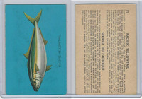 V339-19 Parkhurst, Fish, 1962, #15 Pacific Yellowtail