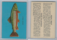 V339-19 Parkhurst, Fish, 1962, #25 Brook Trout