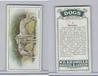 W62-128 Wills Tobacco, Dogs, 1937, #3 Borzois, Russian Wolf