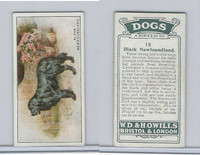 W62-128 Wills Tobacco, Dogs, 1937, #19 Black Newfoundland