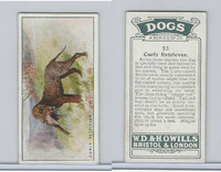 W62-128 Wills Tobacco, Dogs, 1937, #23 Curly Retriever