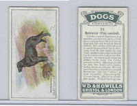 W62-128 Wills Tobacco, Dogs, 1937, #24 Retriever Flat-coated