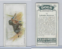 W62-128 Wills Tobacco, Dogs, 1937, #25 Labrador Retriever