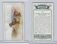 W62-128 Wills Tobacco, Dogs, 1937, #30 Gordon or Black Setters