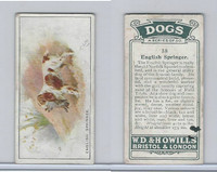 W62-128 Wills Tobacco, Dogs, 1937, #38 English Springer