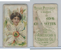 T400-7 American Tobacco Company, Flower Girls, 1910, (3)