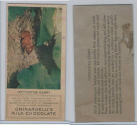 E161 Ghirardelli's, North American Wild Life, 1920's, Cottontail Rabbit