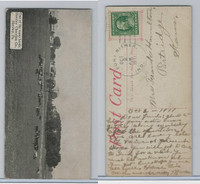 E257 Hershey's, Views Of Hershey Town, 1910, One Of Many Herds (1)
