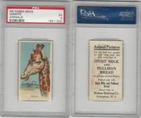 D8 Weber Baking, Animal Pictures, 1920, Giraffe, PSA 5 EX
