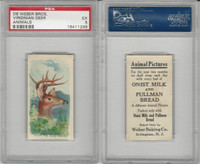 D8 Weber Baking, Animal Pictures, 1920, Virginian Deer, PSA 5 EX