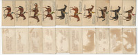 N230 Kinney, English Horses, 1889, Lot of 10 Different