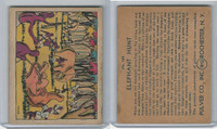 R108 Pulver Co., Pulver Pictures, 1930's, #128 Elephant Hunt (B)