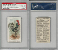 N20 Allen & Ginter, Prize & Game Chickens, 1892, Andalusian Cock, PSA 4 VGEX
