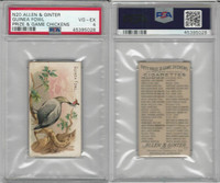 N20 Allen & Ginter, Prize & Game Chickens, 1892, Guinea Fowl, PSA 4 VGEX