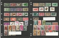 Spanish Colonies Stamp Collection on 3 Stock Pages, Mint NH Sets, JFZ