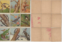 1940's Bird Lotto Game Cards, Lot of 9 Different, Titmouse, Chickadee Towhee