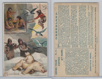K4 Arbuckle Coffee, History Sports and Pastimes, 1890, #24 Greenland Polar Bear