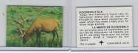 F Card, Cracker Jack, Endangered Species 3D, 1973, Roosevelt Elk