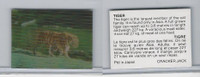 F Card, Cracker Jack, Endangered Species 3D, 1973, Tiger