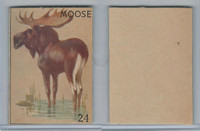 R15-2 Schranz & Beiber Co., Animals, 1930's, #24 Moose