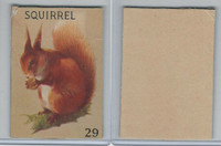 R15-2 Schranz & Beiber Co., Animals, 1930's, #29 Squirrel