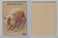 R15-2 Schranz & Beiber Co., Animals, 1930's, #30 Armadillo