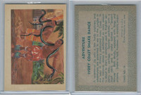 R749 Gum Products, Adventure, 1956, #15 Ivory Coast Snake Dance
