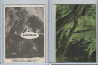 1965 Donruss, King Kong, #26 But I Didn't Expect You To Go Overboard
