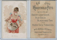 N194 Kimball, Household Pets, 1891, Pet Kittens