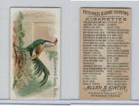N20 Allen & Ginter, Prize & Game Chickens, 1892, Duckwing Game Fowl