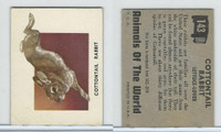 1951 Topps, Animals of the World, #143 Cottontail Rabbit
