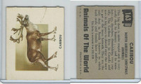 1951 Topps, Animals of the World, #163 Caribou