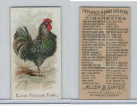 N20 Allen & Ginter, Prize & Game Chickens, 1892, Black Frizzled Fowl