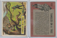 1965 Topps, Battle, #51 Tangled On A Tree