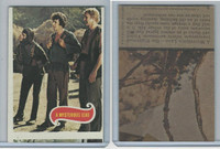 1975 Topps, Planet of the Apes, #9 A Mysterious Lead