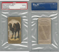 N216 Kinney Cigarettes, Animals, 1890, Bactrian Camel, PSA 2 Good