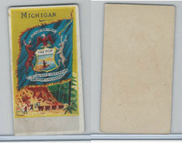 H629 Blank Back, State Flags, 1890's, Michigan