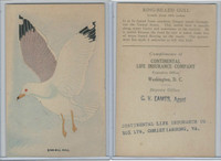 H696 Life Insurance of Virginia, Birds, 1920's, Ring-Bill Gull