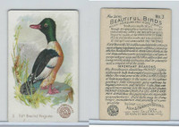 J2, Church & Dwight, Beautiful Birds New Series, 1896, #3 Buff Br Merganter