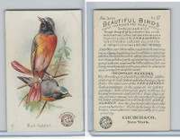 J2, Church & Dwight, Beautiful Birds New Series, 1896, #17 Black Redstart