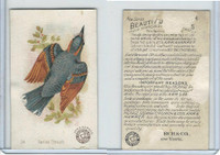 J2, Church & Dwight, Beautiful Birds New Series, 1896, #24 Varied Thrush