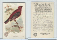 J2, Church & Dwight, Beautiful Birds New Series, 1896, #33 Pine Finch