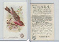 J2, Church & Dwight, Beautiful Birds New Series, 1896, #37 Crimson Fronted Finch